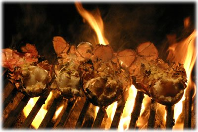 Best recipe for grilling lobster tails