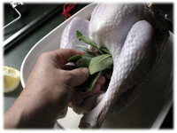 stuffing turkey with sage