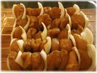 chicken onion skewers