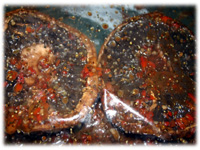feta stuffed grilled portabella mushrooms