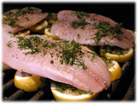 grill fish on lemons
