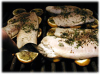tilapia and fresh lemons on the grill
