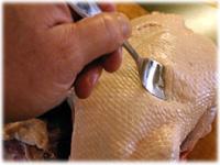 pierce skin of peking duck